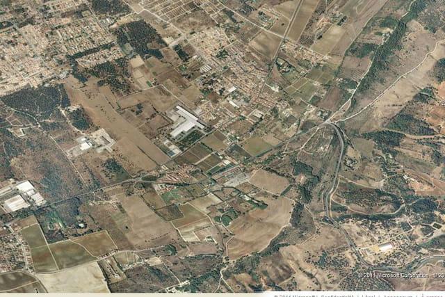 Le domaine de Bacalhoa