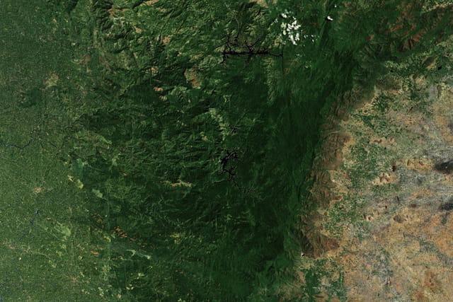 Reserve naturelle de Periyar