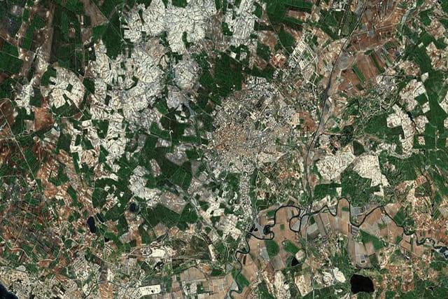 L'Alcázar