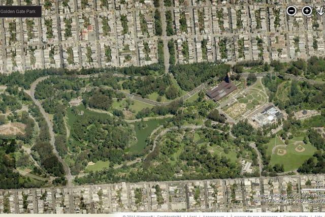 Les jardins botaniques de San Francisco, à l'Arboretum de Strybing
